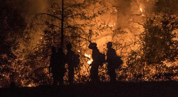 Typan Island fire fighters