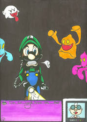 Look Out Luigi D8