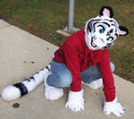 Nate Tiger by Blonde-Foxy