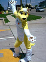 My fursuit is Done by Blonde-Foxy