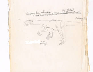 Old Deinonychus pic. Fall 1988 by Artwalker-67