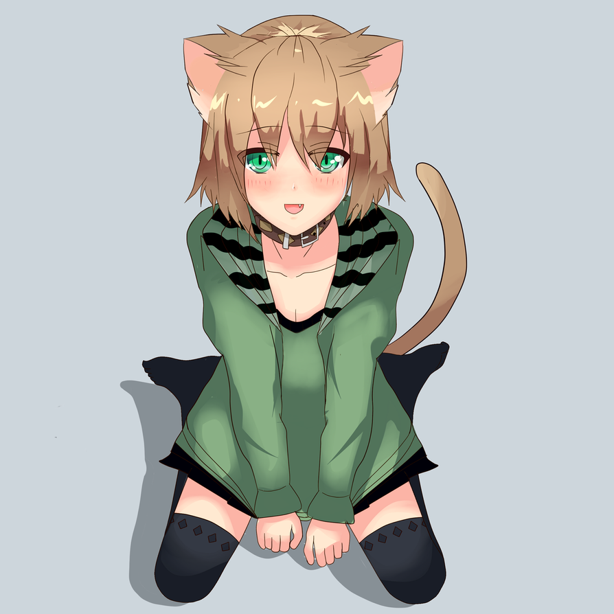 Anime Cat Girl Litle