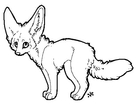 Fennec fox lineart