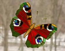 Butterfly 14 by Olegas-Olsauskas
