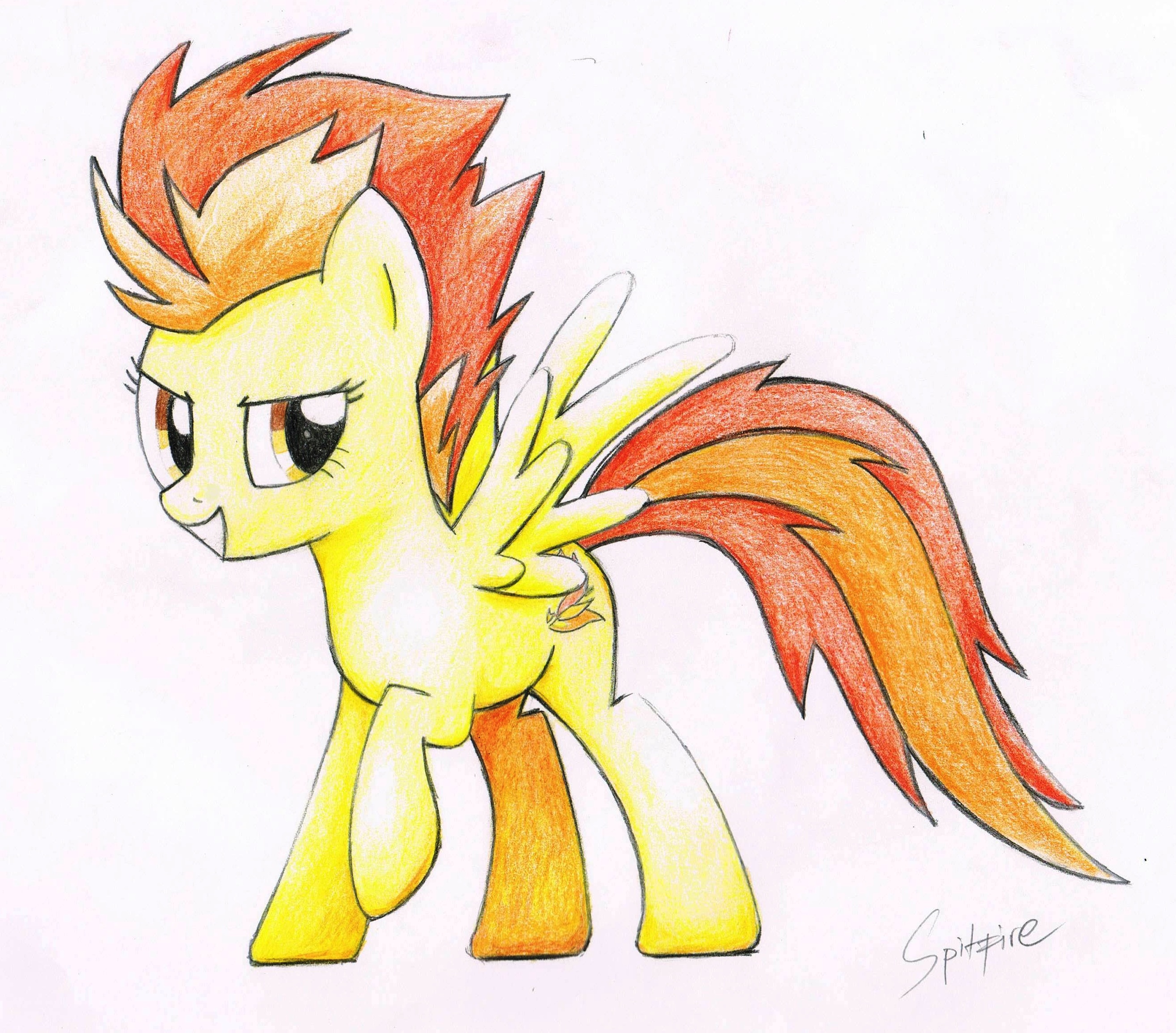 Spitfire by awengrocks