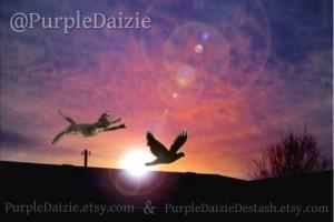 PurpleDaizie's Profile Picture