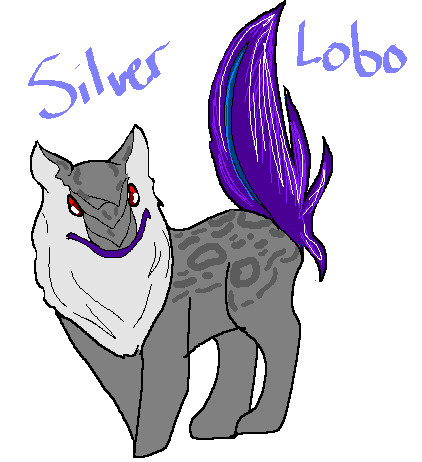 silver lobo by flickrBLITZshimmer