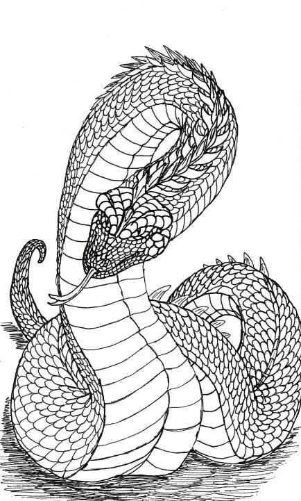 Line Art Snake : Lineart little pic of snake by kxeron on deviantart