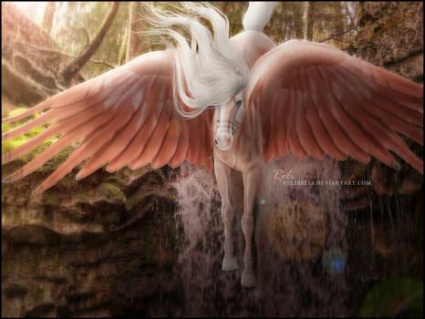 [COMM] ANGELS FALLING