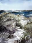 Cold seashore grass by Zawij