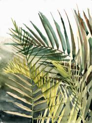 Arecaceae - household jungle in greens #2 by Zawij