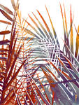 Arecaceae - household jungle in reds #4