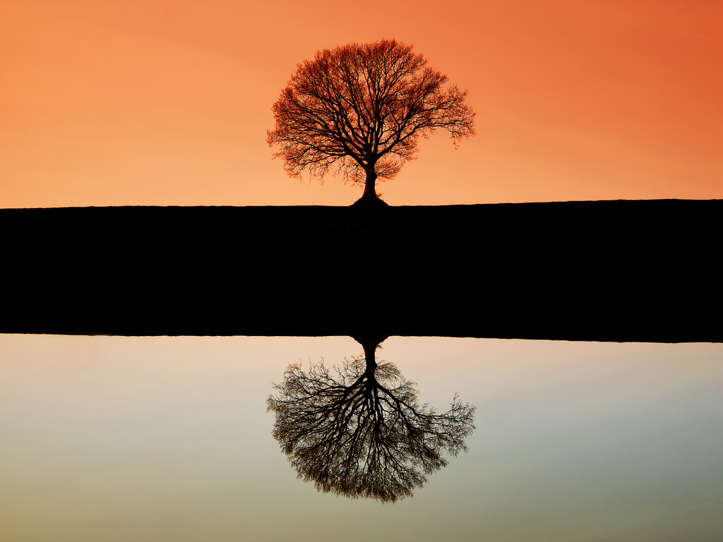 Symmetry by rhb4