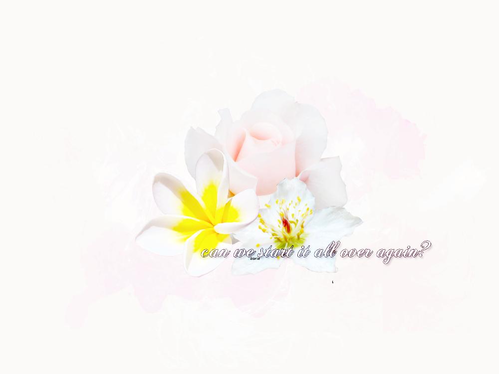 Flowers lyrics texture 004 by ilarylionlover on deviantart flowers lyrics texture 004 by ilarylionlover mightylinksfo