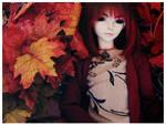 + Red Autumn +