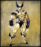 Wolverine -Colored- by Kalel06