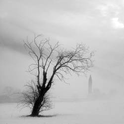 Tree and monastery in the snow by ilsilenzio