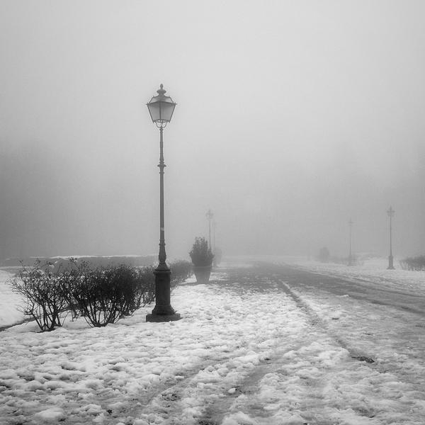 Frozen autumn by ilsilenzio