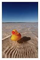 quack by bryan-cuttance
