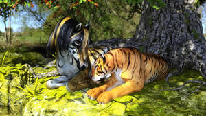 Tiger Stripes by TritiumCG