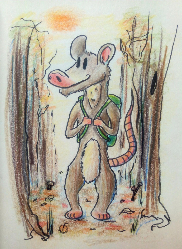 Autummn possum by Whitecinnamon252