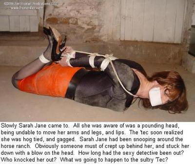 Sarah Jane Drake PI 7 by spandexsleuth