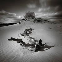 A gentle breeze... by Eukendei