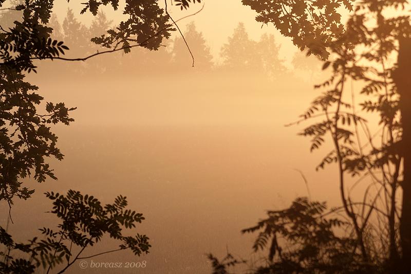 Natural frame by boreasz on DeviantArt