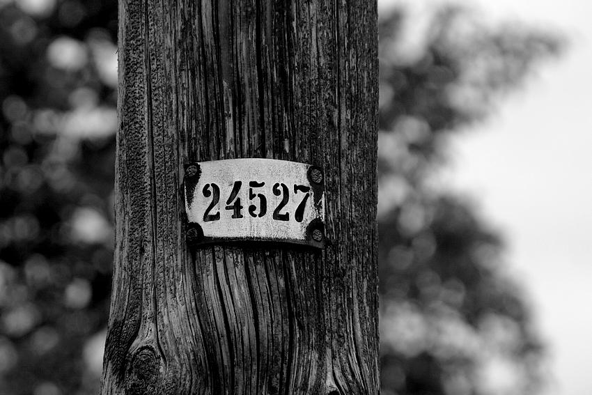 24527 by boreasz