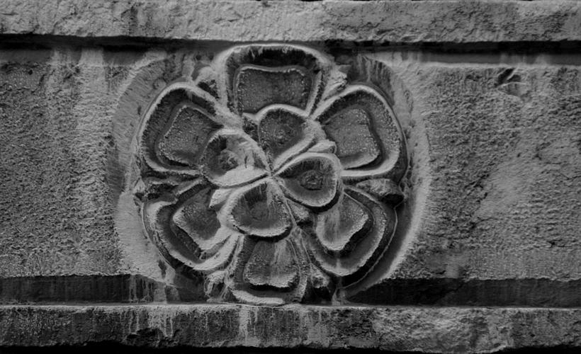 stone flower by boreasz