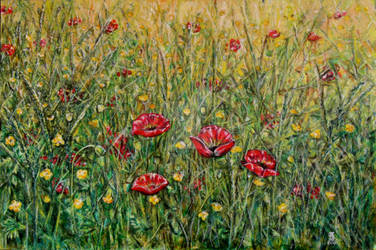 Meadow by Piraeuse