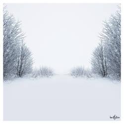Winter comes again ...