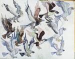 Bird kingdom army by masonthetrex