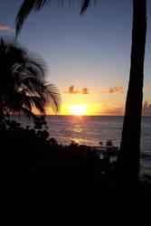 Maui 1 by loanerdave