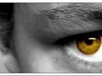 Eye of Photography by Calahan