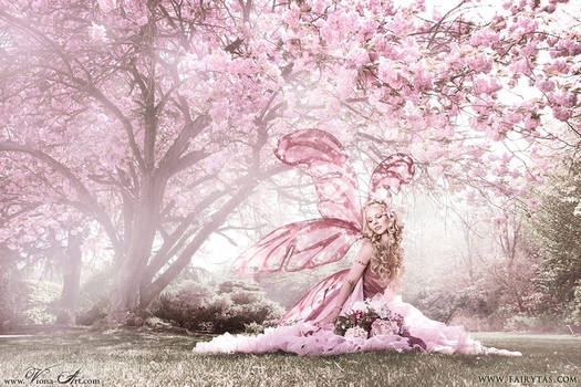 Original character (Cherry Blossom Fairy)