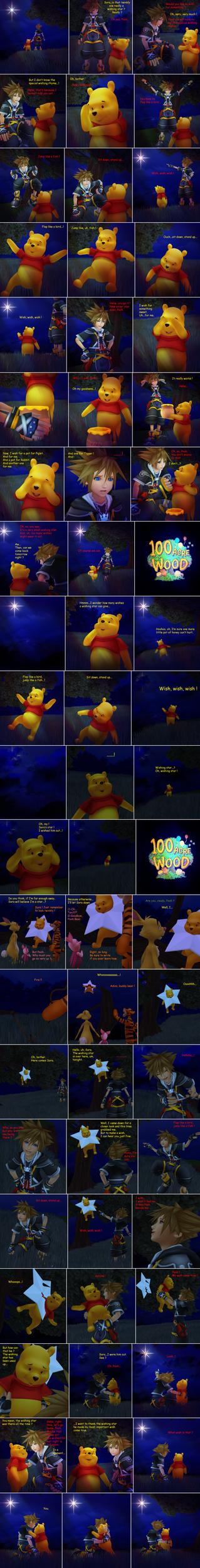 The Wishing Bear by SorasPrincesss