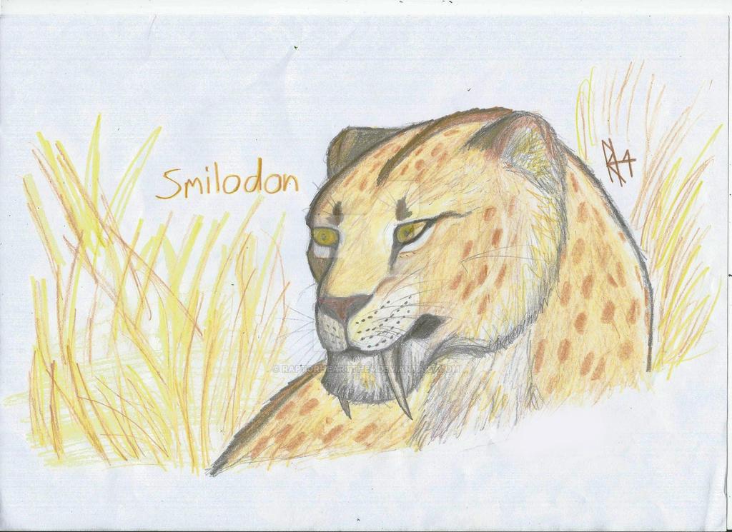 smilodon by RAPTORHEARTthe4