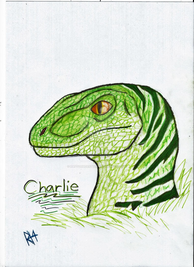 Charlie by RAPTORHEARTthe4
