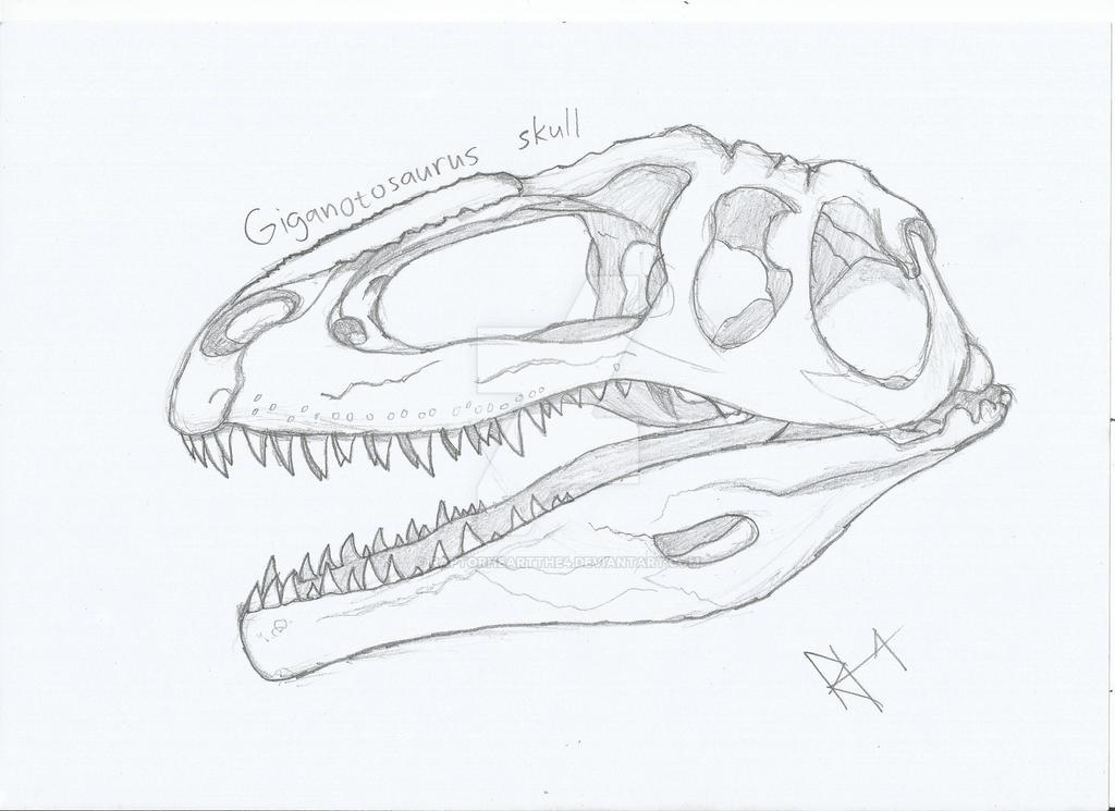 Giganotosaurus skull by RAPTORHEARTthe4