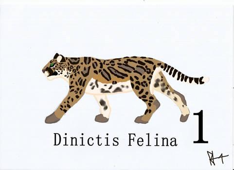 Dinictis Felina