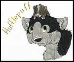 Huffly Puffly