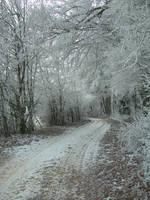 Winter Path II by kuschelirmel-stock