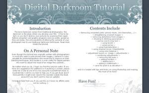Digital Darkroom Tutorial by kuschelirmel-stock