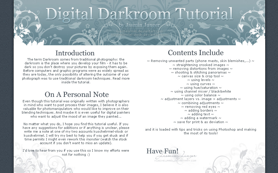 Digital Darkroom Tutorial