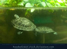 Underwater - turtles by kuschelirmel-stock
