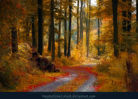 Autumn 08 by kuschelirmel-stock