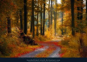 Autumn 08 by kuschelirmel-stock