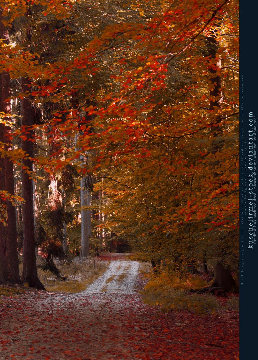 Autumn 01 by kuschelirmel-stock