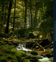 Forest River Premade by kuschelirmel-stock